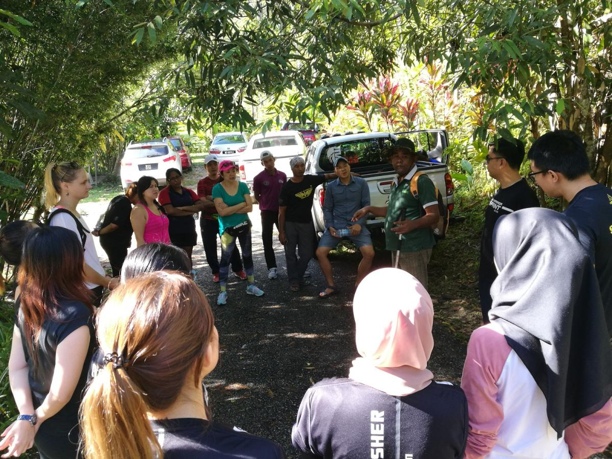 Anani Villa - Jungle Trekking